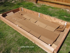 Raised bed with cardboard base.