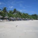 Beach at Coconut Beach Club.