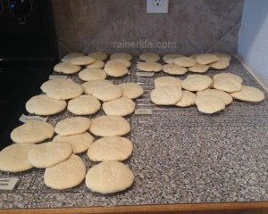 Basic sugar cookies made using different vanilla extracts.