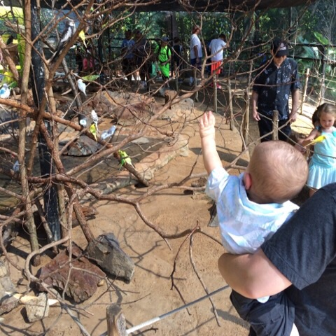 Gavin at Caldwell Zoo | rainerlife.com