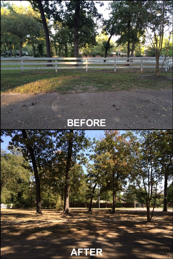 Our yard with fences removed {before & after} | rainerlife.com