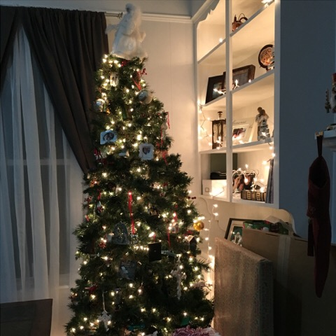 Our Christmas Tree | rainerlife.com